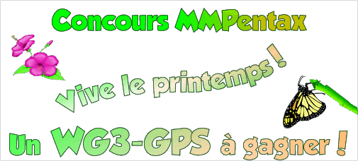 concours_de_printemps